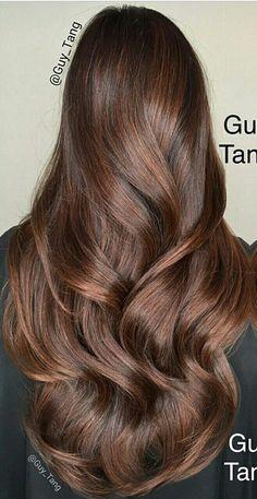 This colour! Hair Color And Cut, Brown Hair Colors, Beautiful Long Hair, Gorgeous Hair, Chestnut Hair, Hair Color Caramel, Haircuts For Long Hair, Hair Color Balayage, Silky Hair