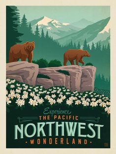American travel poster from the beautiful pacific northwest National Park Posters, National Parks, Kunst Poster, Art Graphique, Parcs, Vintage Travel Posters, Vintage Art, Vintage Style, Vintage Signs