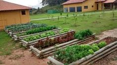 Resultado de imagem para como fazer horta na chacara Wood, Raised Beds, Plants, Woodwind Instrument, Timber Wood, Wood Planks, Trees, Woodworking, Woods