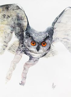 Puchacz (Bubo bubo) Owl Watercolor, Watercolor Illustration, Eurasian Eagle Owl, Bird Barn, Bullfinch, Bird Artwork, Paintings For Sale, Lovers Art, Pet Birds