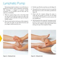 Young Living Essential Oils: Lymphatic System