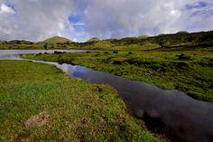 SIARAM :: Zonas Húmidas :: Lagoa do Paul, Pico Island, Azores, Portugal