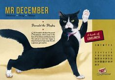 Cat pin-up posters for Lucky Pet cat food