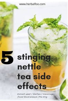 Every herb used medicinally comes with side effects. Nettle is a powerful plant, which in high doses, can cause multiple issues. Read here to find out who is affected by these nettle tea side effects and how to mitigate them. Cold Home Remedies, Natural Home Remedies, Nettle Tea Recipe, Nettle Recipes, Nettle Tea Benefits, Nettle Leaf Tea, Teas For Headaches, Tea For Colds, Pineapple Health Benefits