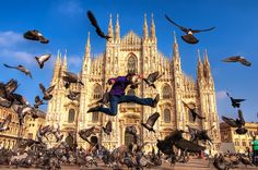 """""""Dove Fighting at the Duomo di Miano""""  This photo taken on October 3, 2010 in Milan, Lombardy, IT."""