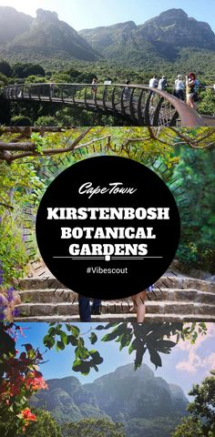 Kirstenbosch is a breathtaking botanical garden seated at the eastern foot of Table Mountain. Once you have explored it, you'll understand why it has been rated as Africa's most beautiful garden