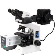 AmScope 40x-2000x Widefield Epi-fluorescent Binocular Compound Microscope