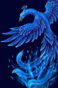 Resultado de imagem para fotos da fantasia da fenix azul