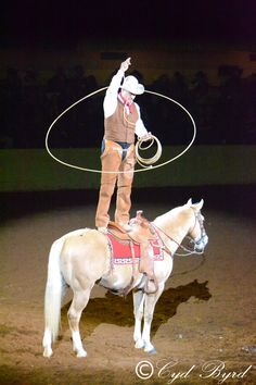 Fort Worth Stock Show Rodeo Finals night performance (c)CydByrd Fort Worth Stock Show, Livestock Farming, Show Cattle, Bull Riding, Show Horses, Rodeo, Country Style, Finals, Ranch