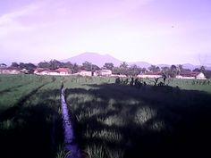 Pemandangan Gunung gede