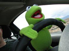 Kermit the frog Meme Pictures, Reaction Pictures, Sapo Kermit, Funny Kermit Memes, Ichigo E Rukia, Sapo Meme, Frog Wallpaper, Frog Meme, Les Reptiles