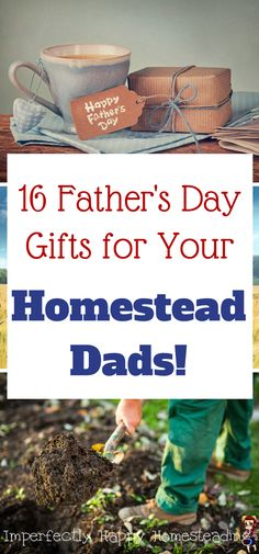 16 Father's Day Gift Ideas for Your Homesteading Dad - gardening, camping, grilling and more!