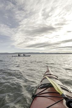 Gaspésie is overlapped by a dozen pristine watercourses that link the verdant valleys bordering the Chic-Chocs, with more than km of waterways available to kayaking enthusiats. Destinations, Excursion, Hiking Trails, Kayaking, Diving, Saint Laurent, Wildlife, Link, Places