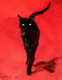 Black Cat Red Background Art Print