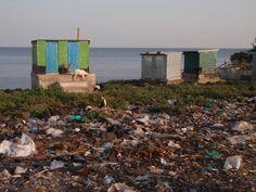 The water sanitation crisis claims more lives through disease than any war claims through guns