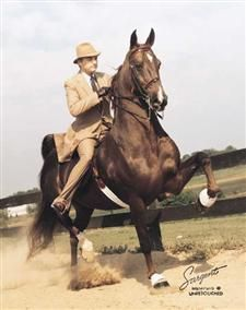 Don Harris and CH Imperator