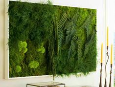 ▷ Ideen zum Thema Moosbilder selber machen a DIY picture with moss and different plants Plant Projects, Different Plants, Fairy Houses, Cactus Plants, Wands, Diy Home Decor, Herbs, Cool Stuff, Pictures