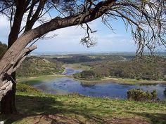 Worn Gundidj Visitor Centre, Princes Hwy, 14 km west of Warrnambool, Victoria, Australia