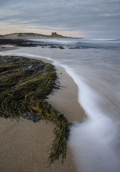 The Norman Bamburgh Castle, Northumberland Coast, England