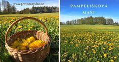 Pampelišková mast Wicker Baskets, Homemade, Beauty, Treats, Syrup, Sweet Like Candy, Goodies, Home Made, Beauty Illustration