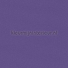 deep purple-blue