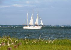 charleston+sc+mansions | Charleston, SC : Sailing boat in the Charleston Harbor photo, picture ...