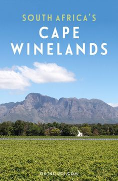 A tasting tour of the Cape Winelands – Stellenbosch and Franschhoek are an easy day trip from Cape Town and have some of the country's best wines.