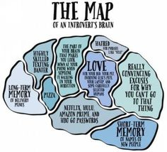 the map of an introvert's brain