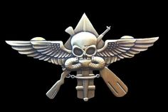 One day I'll will earn this and wear it proudly. OAF Exclusive: MARSOC Finally Receiving a Badge? Marsoc Marines, Us Marines, Special Ops, Special Forces, Us Green Berets, Military Pins, Military Service, Military Weapons, Once A Marine