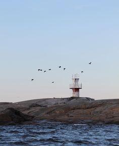 Seascape // Island // Coastal living // Itämeri // Östersjön // Baltic sea  Photo: Pala saaristoa Nordic Home, Xiamen, Archipelago, Island Life, Coastal Living, Scandinavian Design, Cottage, Colour, Instagram Posts