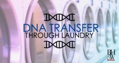 Innocent Transfer of DNA Through a Load of Laundry Criminal Defense, Dna Test, Fort Worth, Laundry, Learning, School, Laundry Room, Teaching, Education