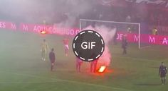 LOCURA | La afición del Benfica tira bengalas, bombas de humo y hasta una silla al portero rival #fashion #style #stylish #love #me #cute #photooftheday #nails #hair #beauty #beautiful #design #model #dress #shoes #heels #styles #outfit #purse #jewelry #shopping #glam #cheerfriends #bestfriends #cheer #friends #indianapolis #cheerleader #allstarcheer #cheercomp  #sale #shop #onlineshopping #dance #cheers #cheerislife #beautyproducts #hairgoals #pink #hotpink #sparkle #heart #hairspray…