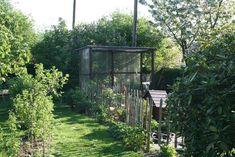 Tomatenhaus, Schrebergarten, selbst bauen