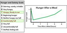 Set point + online weight loss course- BID Medical Centre (Harvard Teaching School)
