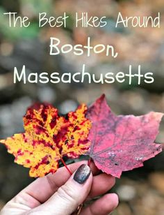 Boston has so much to offer including culture and food. But we also have fabulous green spaces. So join us exploring the best hiking trails near Boston. American Attractions, Travel Usa, Travel Tips, Spain Travel, Travel Guides, Travel Photos, Travel Destinations, Weekend Camping Trip, Harbor Island