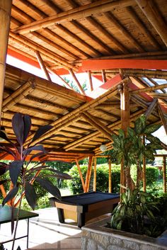 arquitecta carolina zuluaga - Google Search