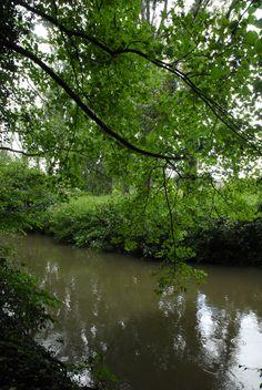 De Geul, Zuid-Limburg.