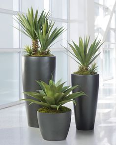 Medium Agave Americana Artificial Plant | Silkflowers.com