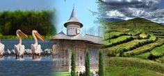Danube Delta, Moldavia Monasteries, Maramures - KARPATEN TURISM -