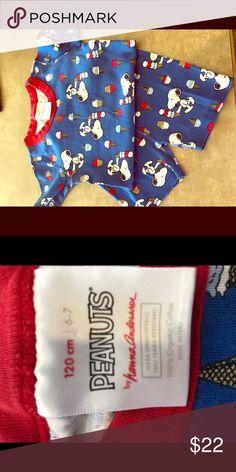 New Hanna Andersson Disney Princess Underwear 7 Pairs Classic M L XL 7 pack