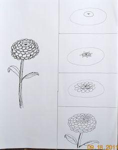 Zinnias | Art class ideas