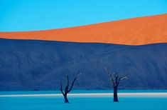Essa dunas na Namíbia se chamam Dead Vlei e figuram entre as maiores do mundo. Na imagem, feita pelo fotógrafo Frans Lating para a National Geographic, a cor do filme fez com que a paisagem ficasse ainda mais surreal.