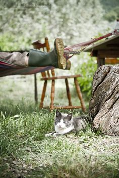 Country Living -Wellies and a cat Country Charm, Country Life, Country Girls, Country Living, Country Style, Country Roads, Country Bumpkin, Lifestyle Fotografie, Vie Simple