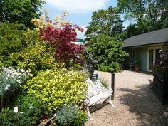 The Garden-Denmans Garden