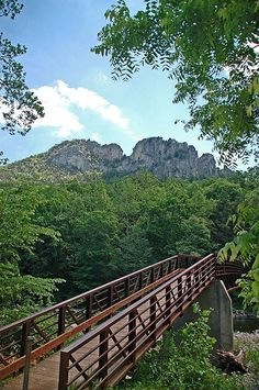 Seneca Rocks.  Going here in 2 weeks!  Can't wait for a little vacation!
