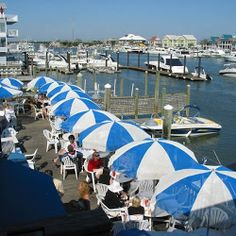 Enjoy gorgeous views of the Intracoastal Waterway as you eat delicious seafood at Dockside Restaurant & Bar, located along Airlie Road #RiverLifeIsGood #GoodEats