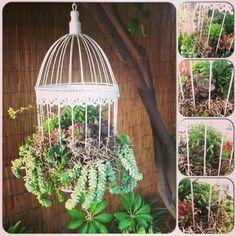 ideas decorativas con plantas