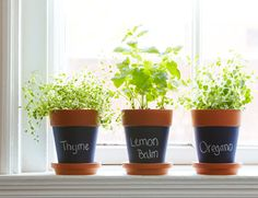CHALKBOARD PLANT LABELS Herbs, flowers or foliage, keep track of all that grows in your garden by painting pots with chalkboard paint. Just be sure to move outdoor pots to a dry place when it rains so the chalk doesn't wash off.