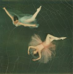 47 years ago today on April Edwin Land introduced his Polaroid camera. Pictured here is a Polaroid of 2 dancers from the Joffrey Ballet from the camera shot by the great Co Rentmeester. Co Rentmeester—The LIFE Picture Collection Joffrey Ballet, Camera Shots, Instant Camera, Life Pictures, Pretty Pictures, Picture Collection, Ballet Dancers, The Life, Fairy Tales