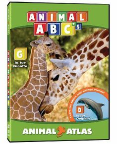 Animal Atlas: ABC's DVD ~ Animal Atlas, http://www.amazon.ca/dp/B004OEX62M/ref=cm_sw_r_pi_dp_jDSotb1EBJQX6